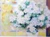 11-shayondiana-white-azaleas-o