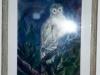 lazarrickdeb-owl-w